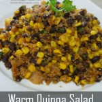 Warm Quinoa Salad – Power Lunch or Fantastic Side