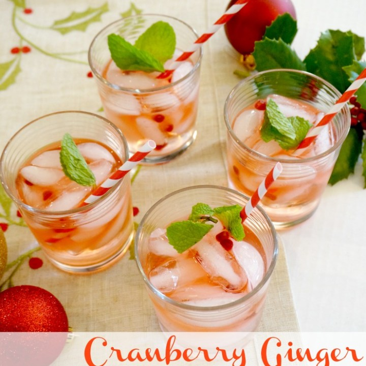 Sparkling Cranberry Ginger Cocktail Recipe for your Holiday Gathering