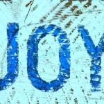 Finding Joy in 2016