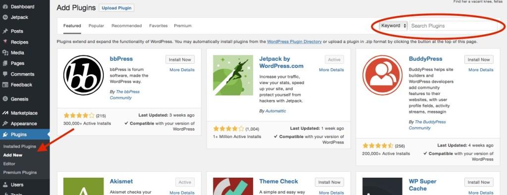 install-wordpress-plugins