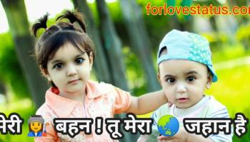 [Best] Brother and Sister quotes With Images, brother and sister status in hindi and english