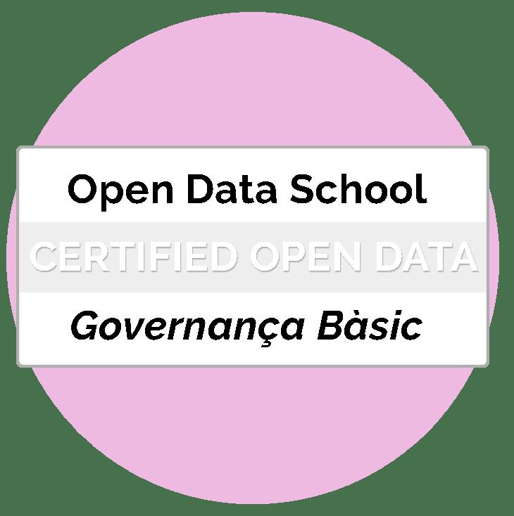 Certificat Professional en Governança Bàsic