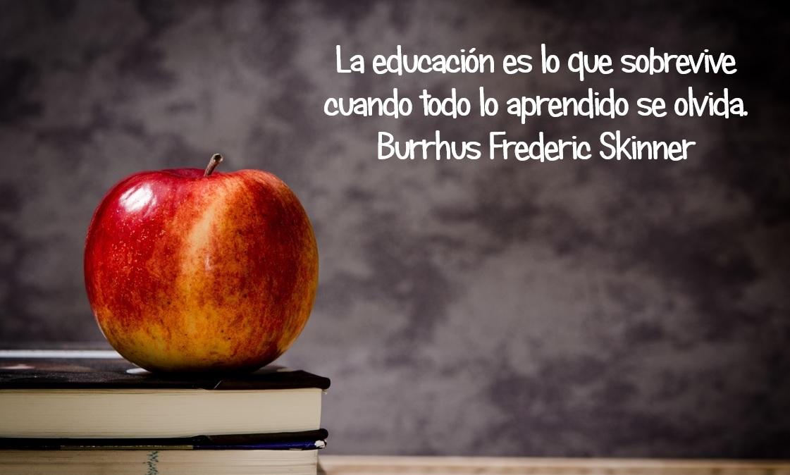 https://i0.wp.com/formacion.ginerymira.com/wp-content/uploads/2014/12/frases-sobre-educacion-11.jpg