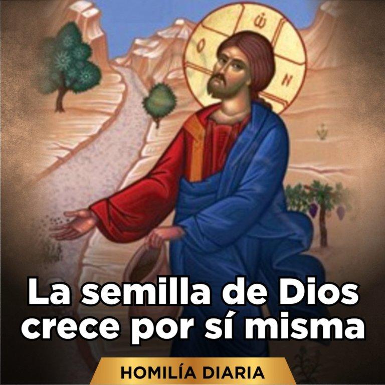 [Homilía Diaria] La semilla de Dios crece por sí misma