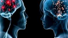 Cerebro de la Mujer y el Varón