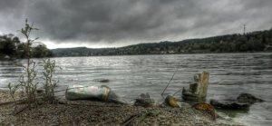 Cuatro cursos gratis sobre contaminación marina