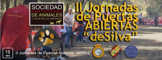 """II Jornadas de Puertas Abiertas """"deSilva"""""""