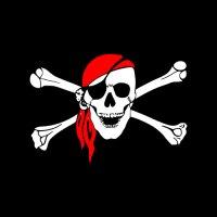 Quieres ser un pirata de la formación programada