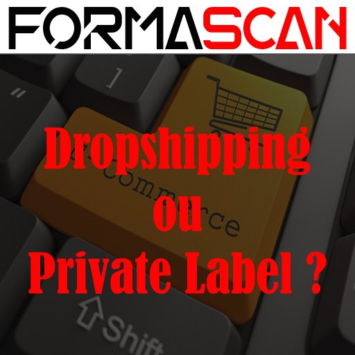 Dropshipping & Private Label