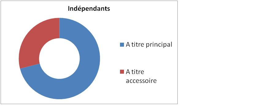 Quel est le statut des indépendants en Belgique :  à titre principal ou à titre accessoire