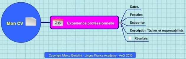Partie de la carte mentale CV qui correspond à votre expérience professionnelle