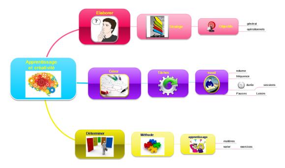 Carte mentale MindMaple : développez une stratégie d'apprentissage