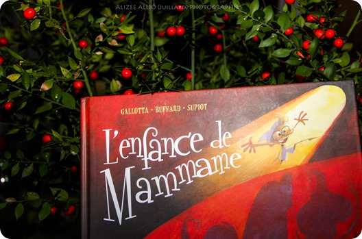 L'enfance de Mammame Jean-Claude Gallotta Noël