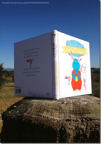 Le dictionnaire des bonnes manières Larousse Jeunesse Savoir vivre et politesse (4)