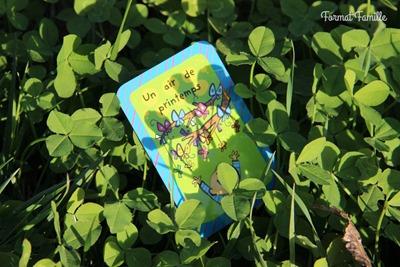 52 cartes pour créer toi meme tes cadeaux activités printemps