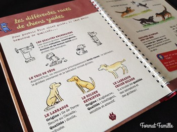 livre chien labrador