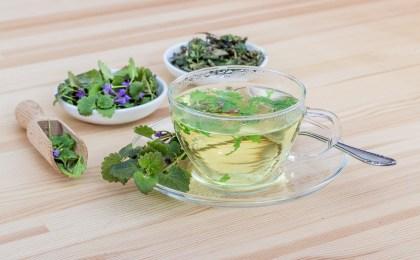 Plantes medicinales et aromatherapie