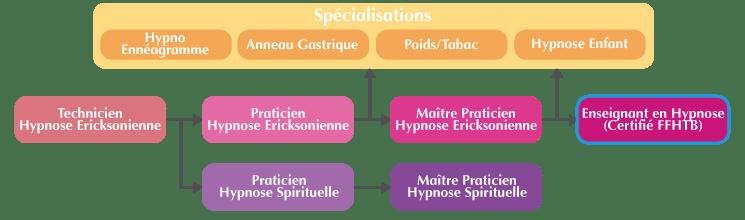 Organigramme Formation Enseignant Hypnose Ericksonienne Suisse