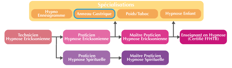 Organigramme Formation Anneau Gastrique Hypnotique Suisse