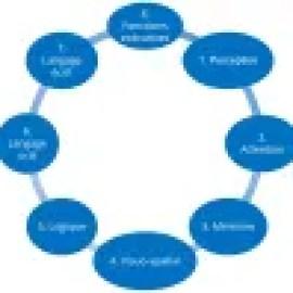 8 fonctions cognitives pour apprendre