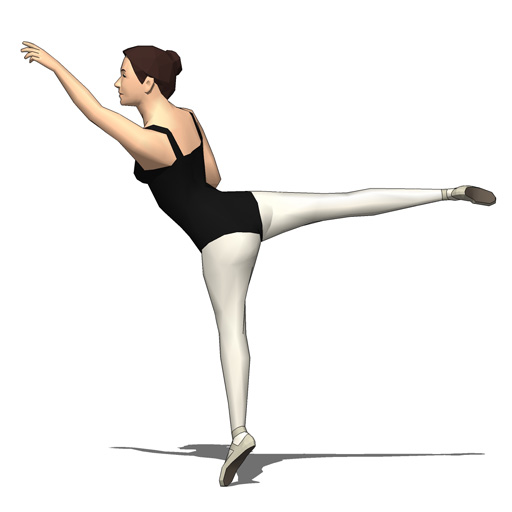 Female Ballet Dancers 3D Model  FormFonts 3D Models