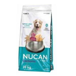 Nucan Cachorro