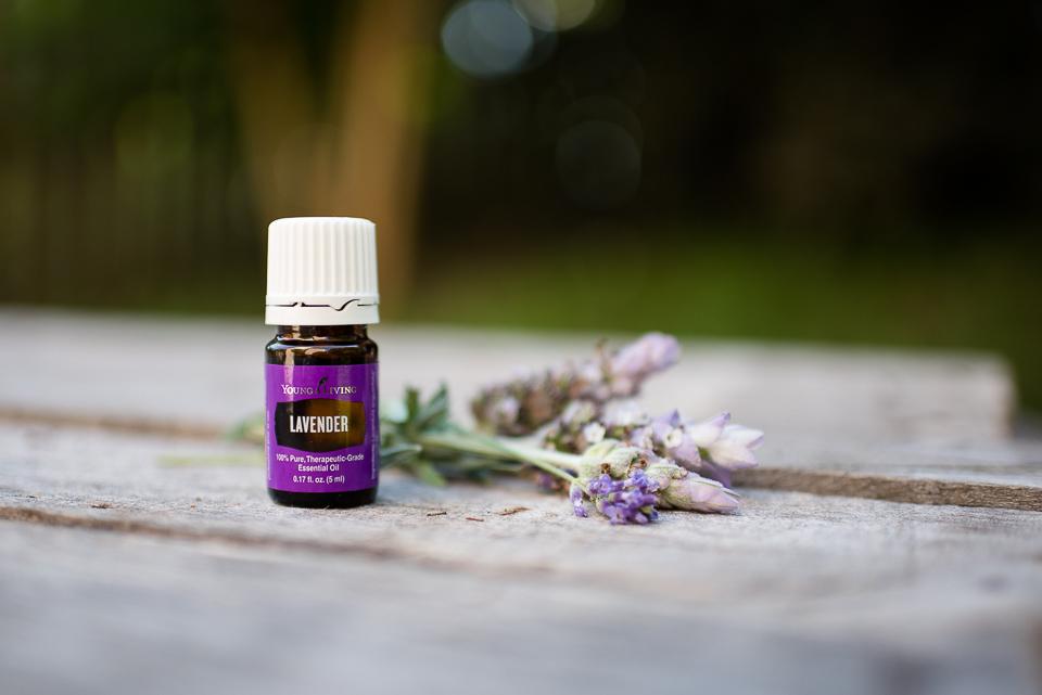 LavenderEssentialOil