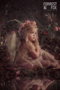 The Fairy Experience Forrest & Fox