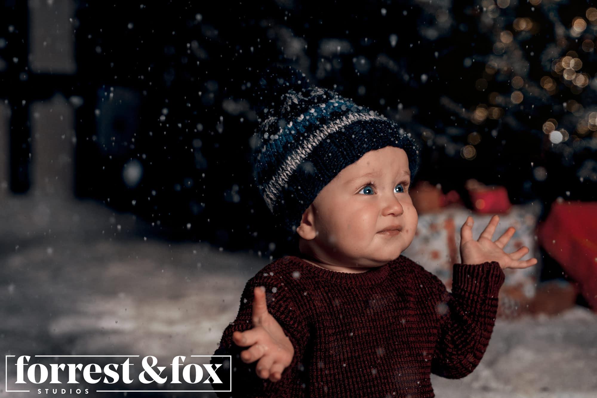 Forrest & Fox Christmas