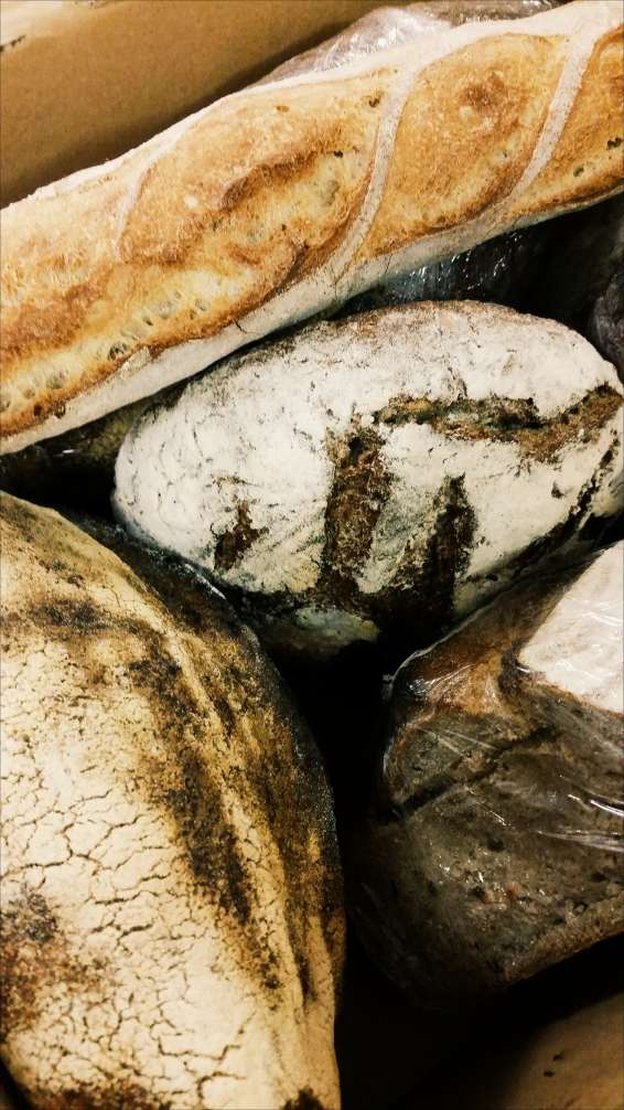 social-enterprise-Glasgow-bread-Freedom-Bakery