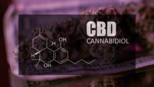 cannabidiol cbd image
