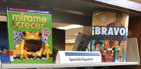 Spanish language materials for the public library