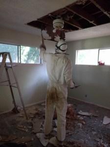 ceiling demolition