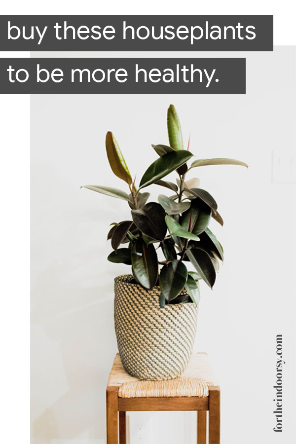 plants that make you healthier
