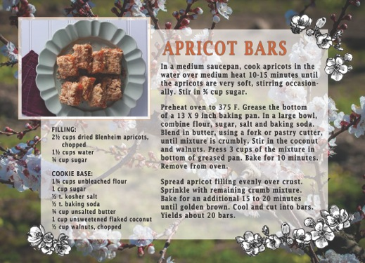 Apricot Bar Recipe Card