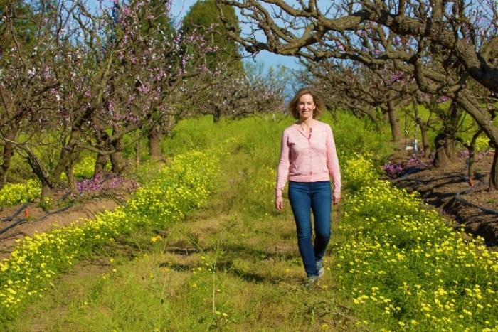 Orchard promenade