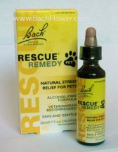 Natural Dog Anxiety Relief