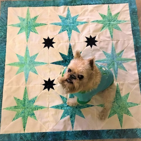 Starlight quilt