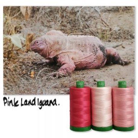 pink land iguaua