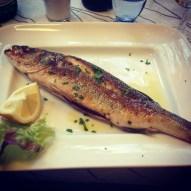 Sea Bass from a local Cinque Terre restaurant