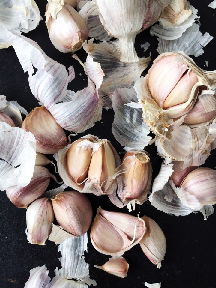 Purple Garlic | for the love of the south