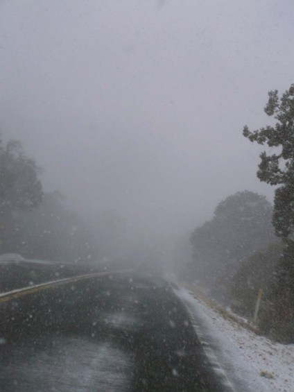 Driving through the snow storm