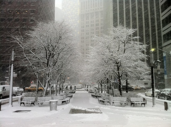 Snow NYC