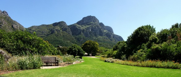 Kirstenbosch_-_View_from_the_Botanical_Gardens
