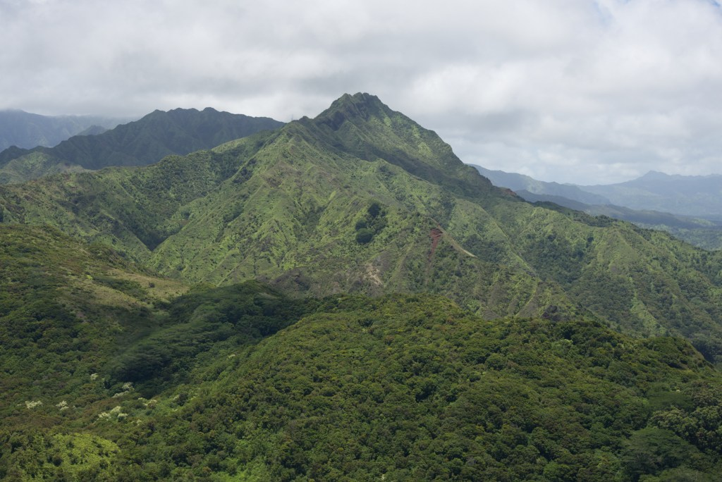 Kauai Helicopter Tour (17 of 48)