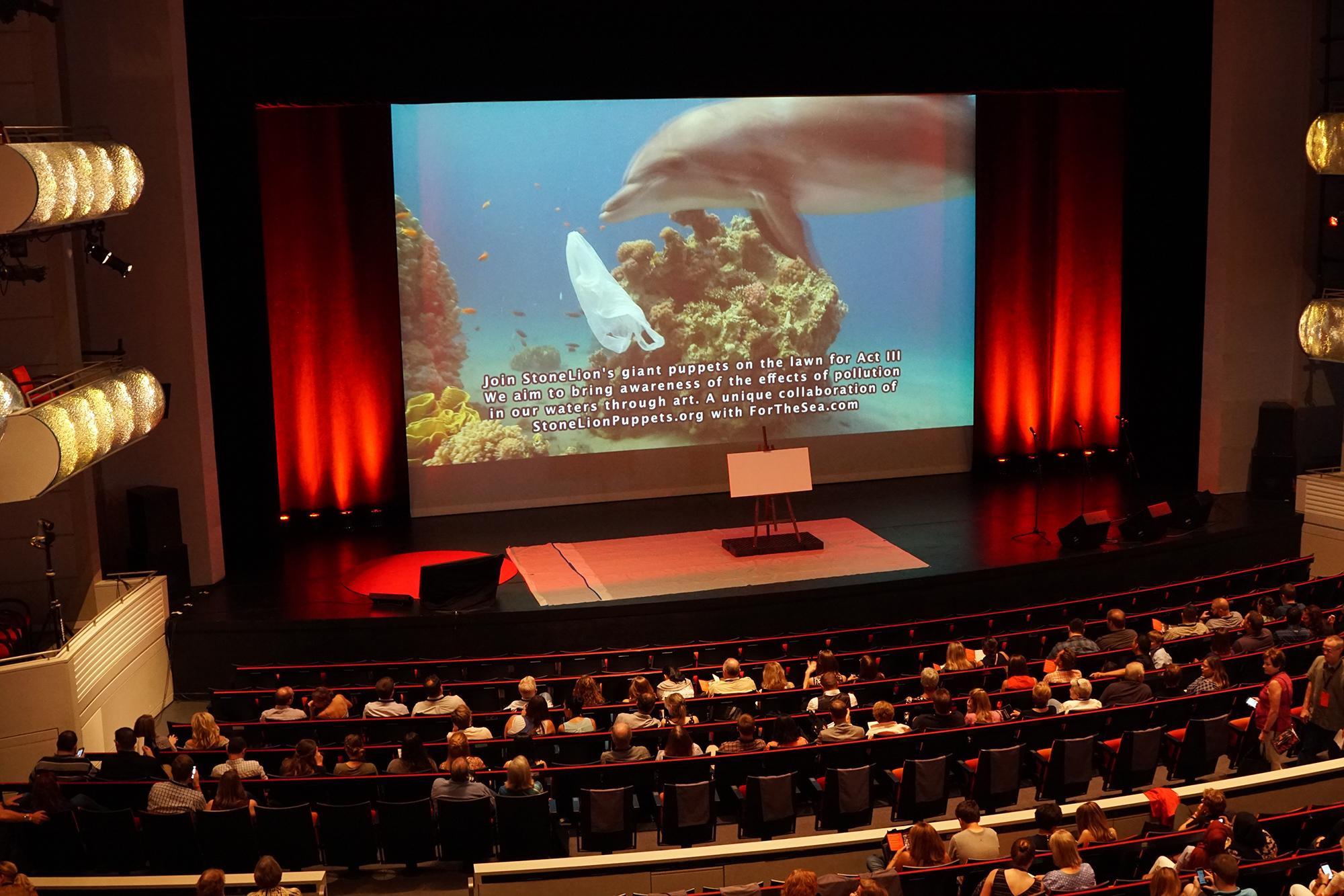 TEDx Dolphin screen