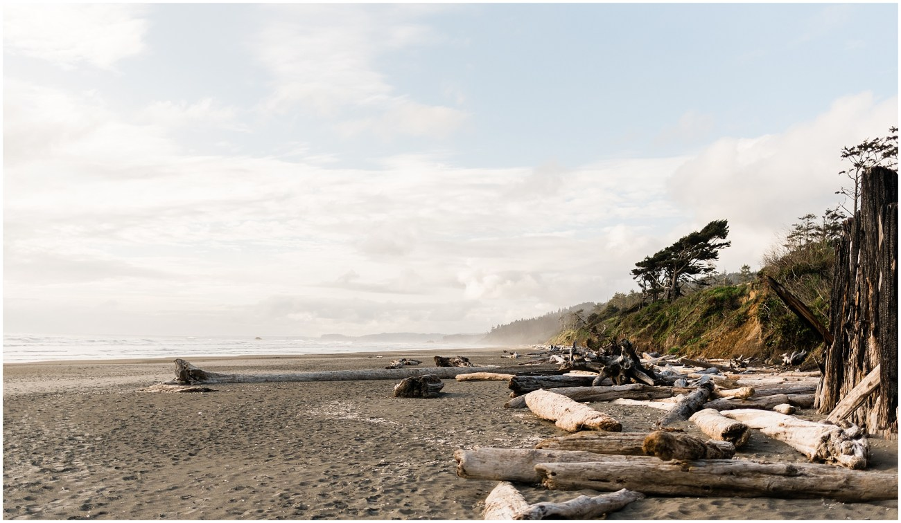 Photo of Kalaloch beach in Olympic National Park by Forthright Photo