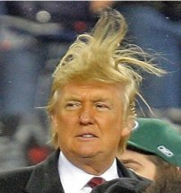 Trump-wild-hair-image-from-fark.com-2