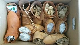 Kasse med ymse skomodeller og størrelser. Andre delen av en leveranse til et friluftsmuseum. / A box full of shoes in different models and sizes, bound for an open air museum