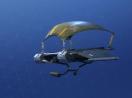 solid-strider-skin-3
